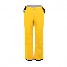 Dare 2b Certify Pant skibroek heren golden lemon