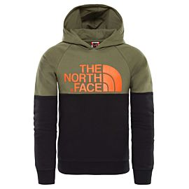 The North Face Drew Peak Raglan Hoodie sweater junior new taupe green