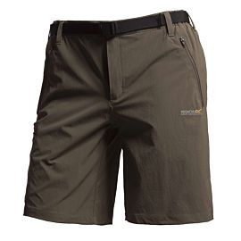 Regatta Xert short heren roasted
