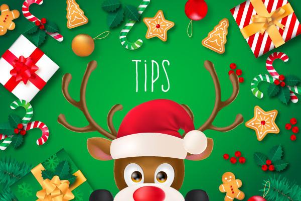 Cadeautips voor de kerst bij De Wit Schijndel